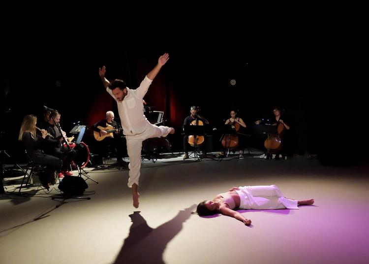Soirs d'été à Silvacane Music, Dance & Cinema à La Roque d'Antheron