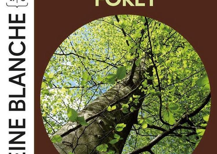 Soixante Minutes Dans La Vie D'Une Forêt à Paris 18ème