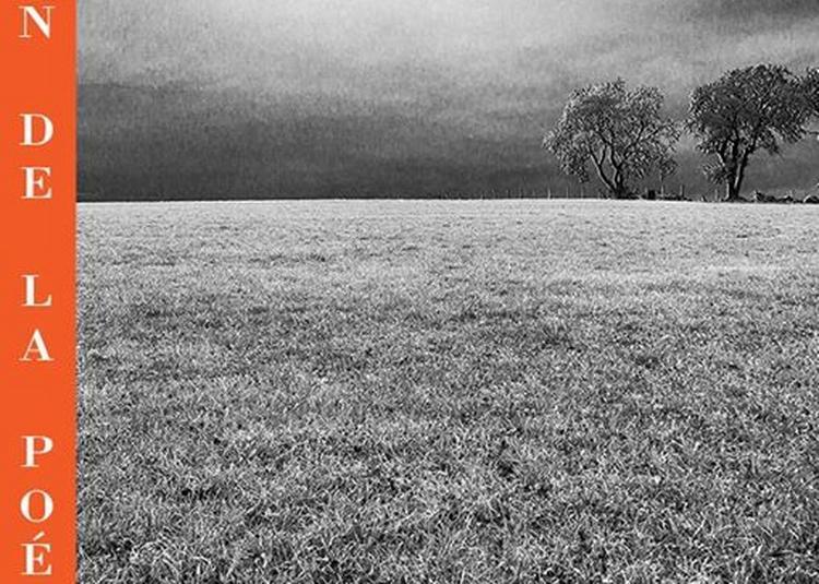 Solitudes // nouvelles de et par Alain Igonet à Avignon