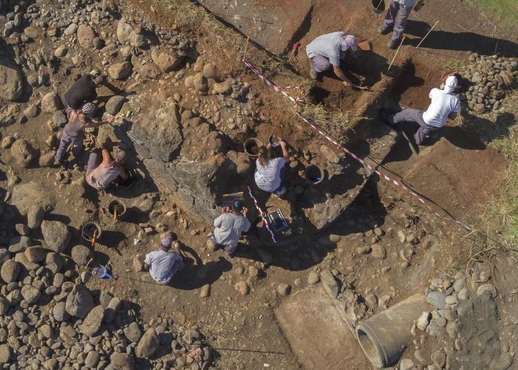 Sondage Archéologique Du Butor : La Marine Richard à Saint Pierre
