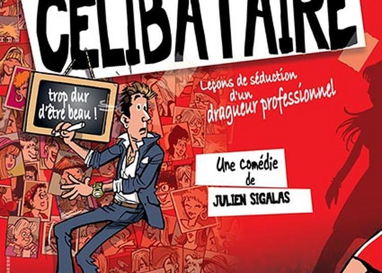SOS Célibataire à Montauban