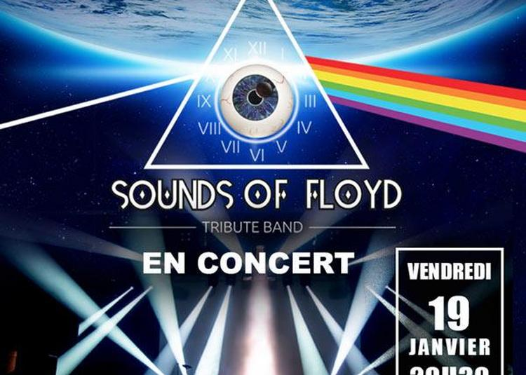Sounds Of Floyd à Orchies