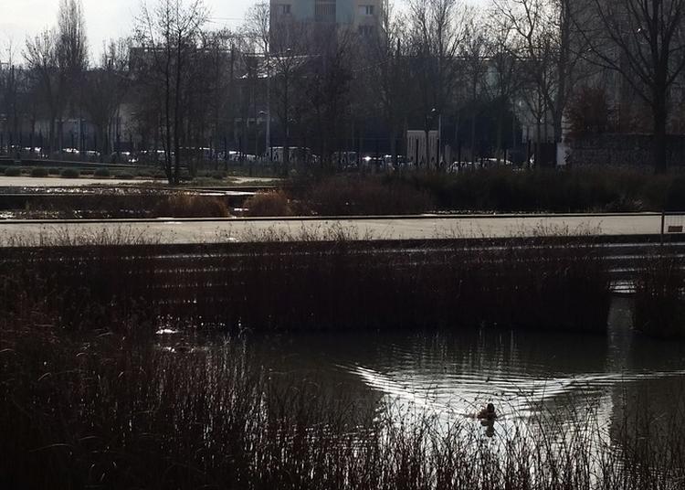 Sous La Faculté, La Plage ! De L'université À L'usine Natalys En Passant Par La Seine. à Nanterre