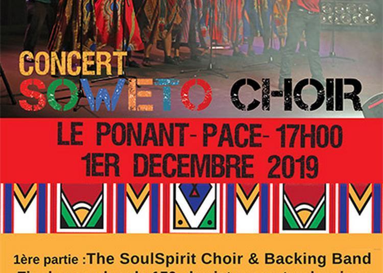 Soweto Choir L'Âme Gospel de l'Afrique du Sud à Pace