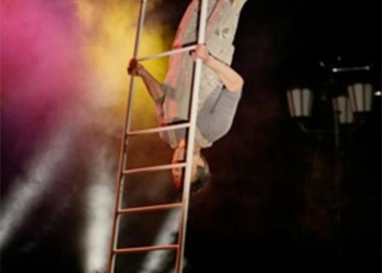 Spectacle De Cirque : Jonglage, échelle Et Autres Fantaisies à Velleches