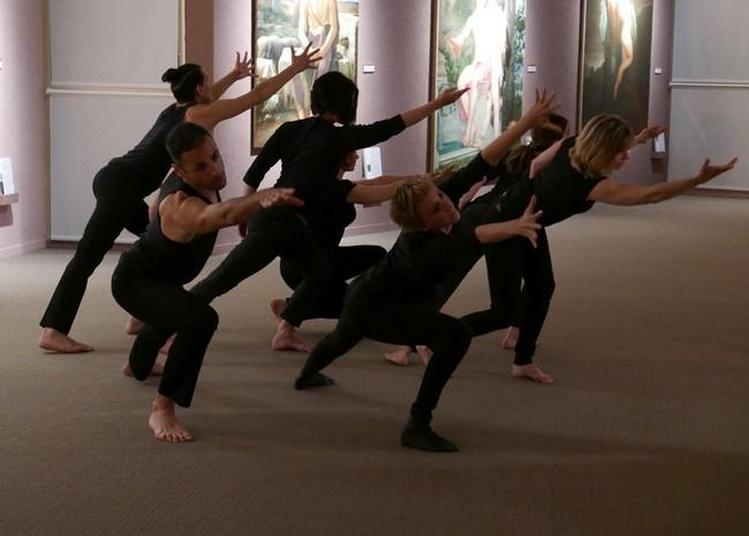 Spectacle De Danse à Montpellier