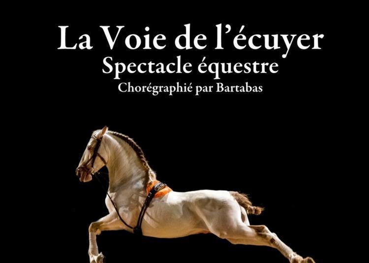 Spectacle De L'académie équestre De Versailles : La Voie De L'écuyer, Opus 2019