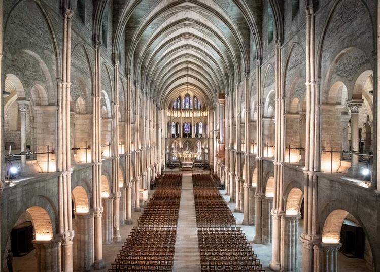 Spectacle Musique Et Lumière à Reims
