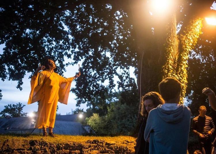 Spectacle nocturne : Claque ton druide ! à Herbignac