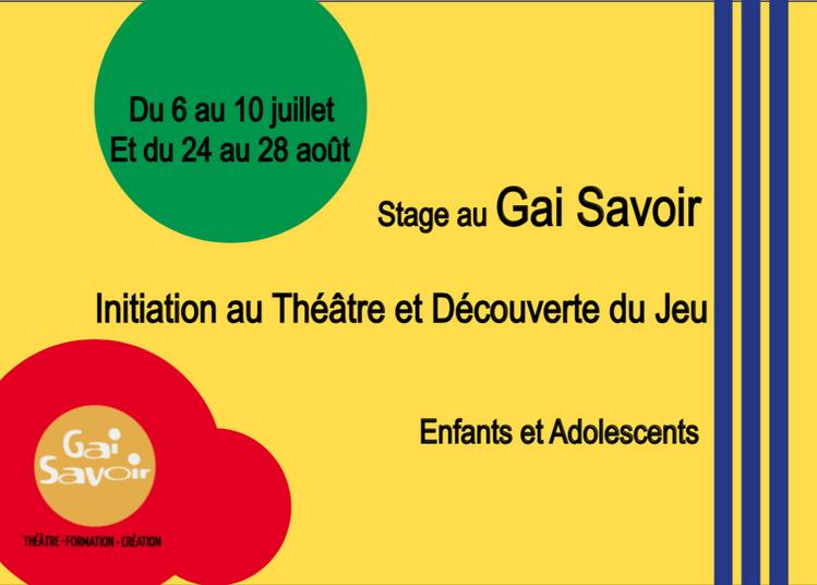 Stage d'été au Gai Savoir à Lyon