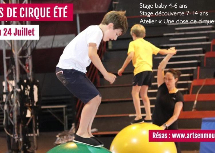 Stages de cirque pour enfants - Vacances d'été   Aix en Pvce à Aix en Provence