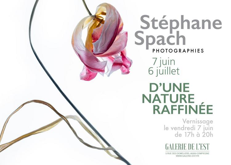 Stéphane Spach