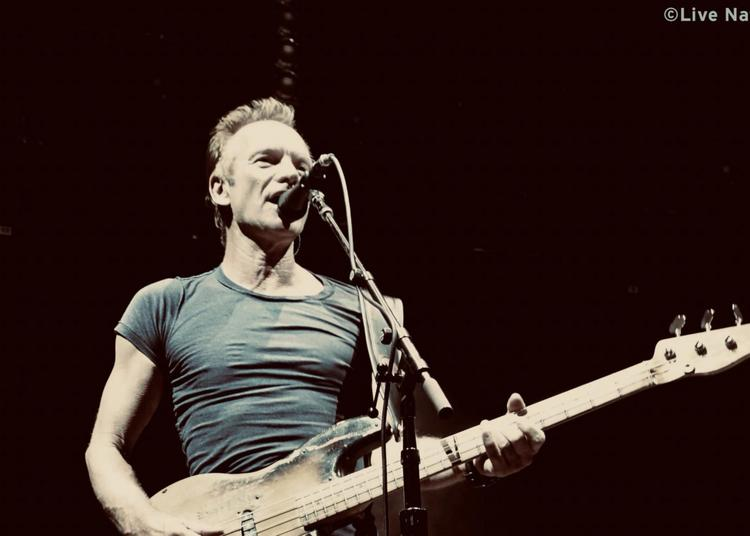 Sting - report à Dijon