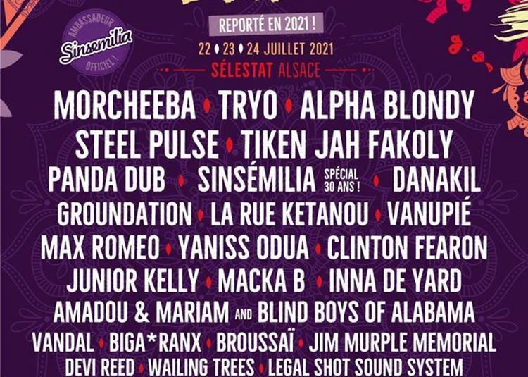 Summer Vibration Reggae Festival 2020