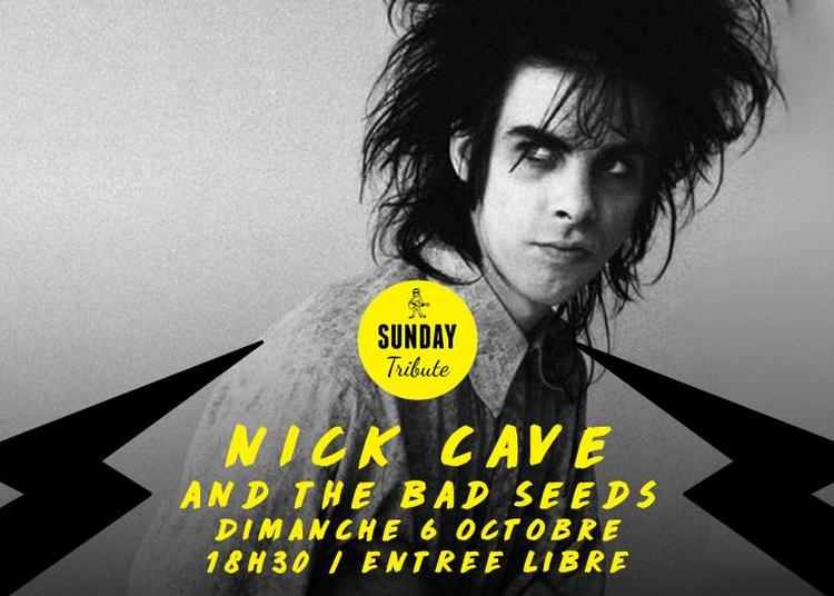 Sunday Tribute - Nick Cave à Paris 12ème