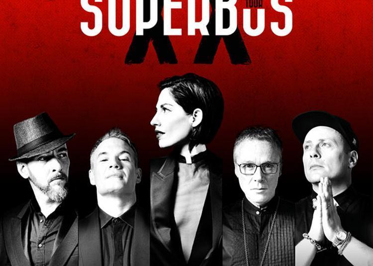 Superbus à Paris 20ème