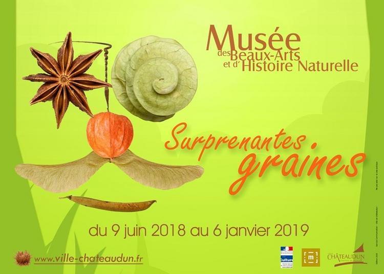 Surprenantes Graines à Chateaudun