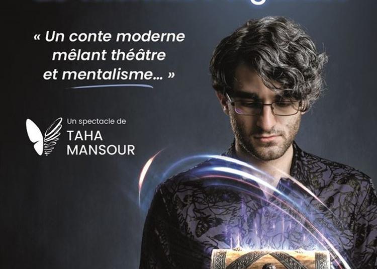 Taha Mansour Dans La Mystérieuse Histoire De Thomas Polgarast à Paris 15ème