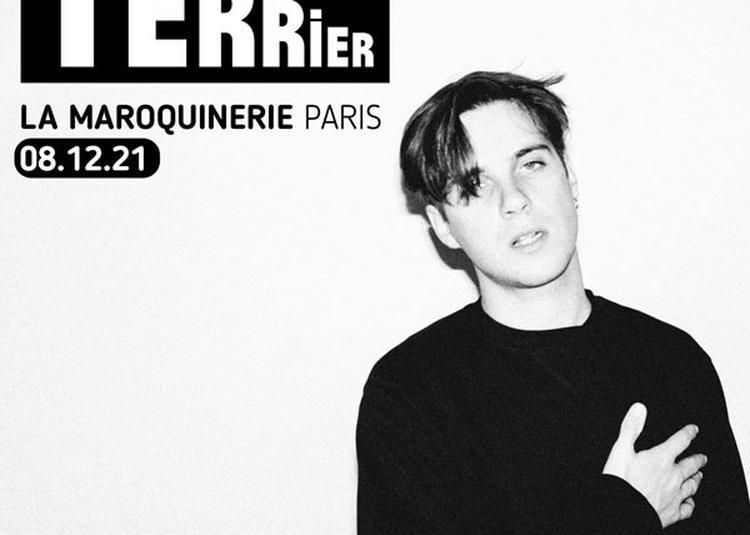 Terrier à Paris 20ème