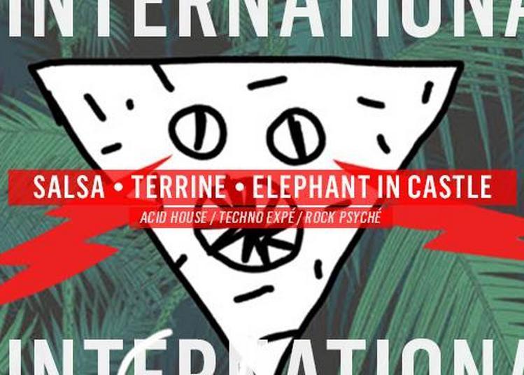 Terrine - Salsa - Elephant in Castle à Paris 11ème