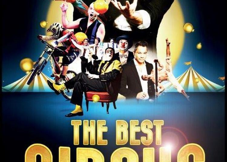 The best circus artists à Le Plessis Robinson