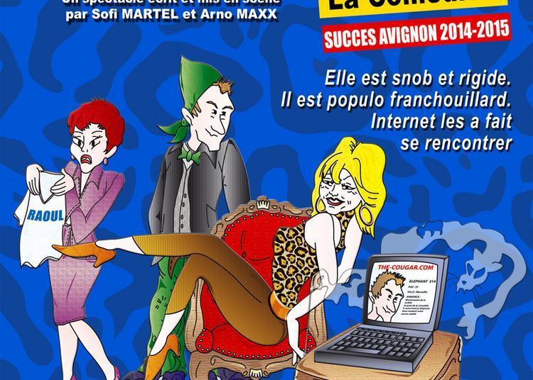 The Cougar. Com, la comédie à St-Etienne à Saint Etienne