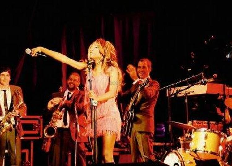 An 3:requin Chagrin+the Excitements à Toulouse
