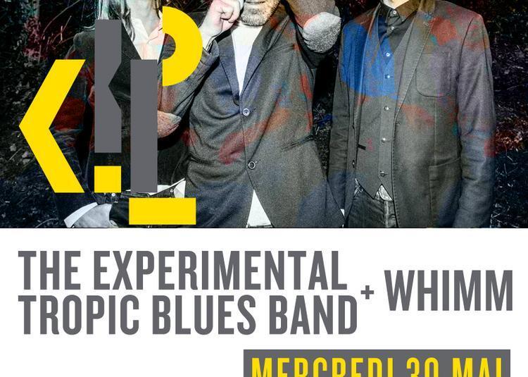 The Experimental Tropic Blues Band et WHIMM à Paris 1er