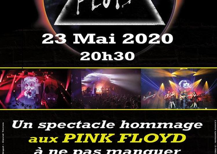 The Floyd Tribute To Pink Floyd En Concert à Seignosse