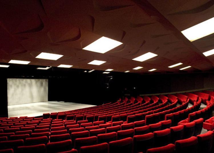 Théâtre De La Licorne à Cannes la Bocca