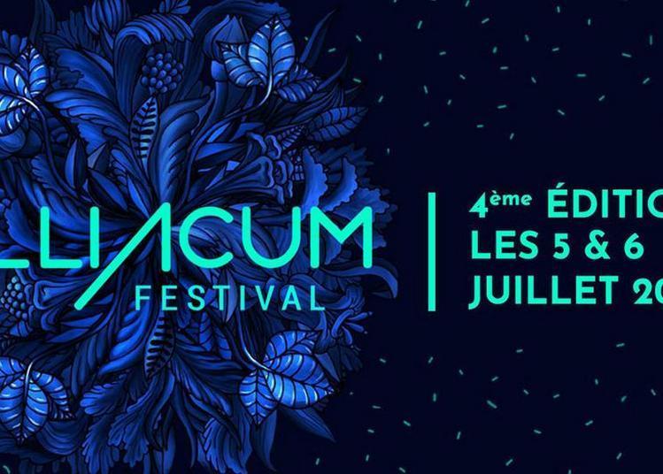 Tilliacum Festival - Vendredi à Teille