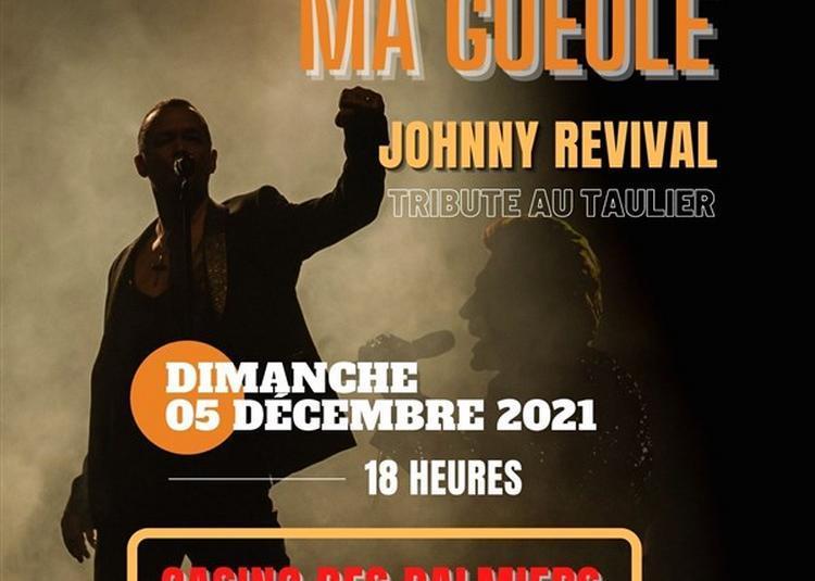 Toi Ma Gueule : Johnny Revival à Hyeres