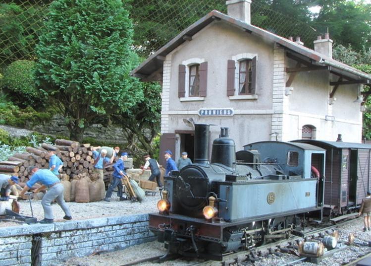 Train De Jardin à Couches