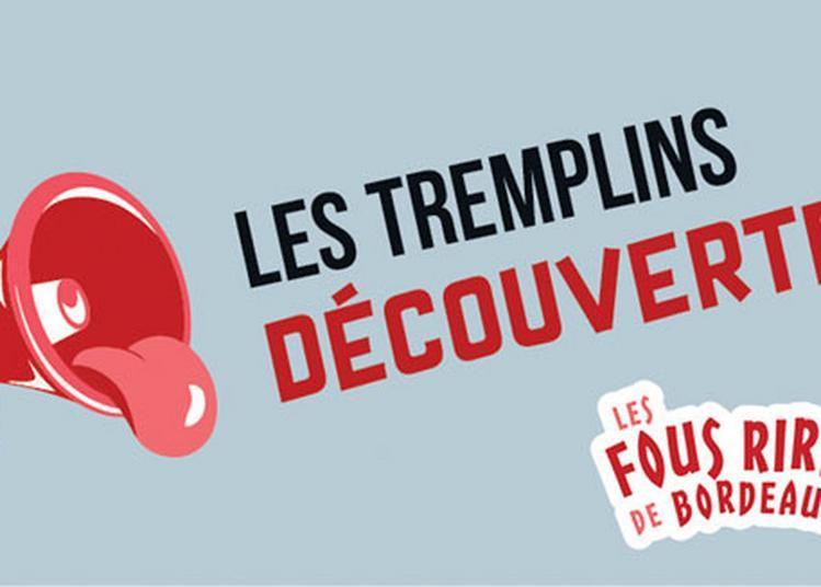 Tremplin Decouvertes 1 à Bordeaux
