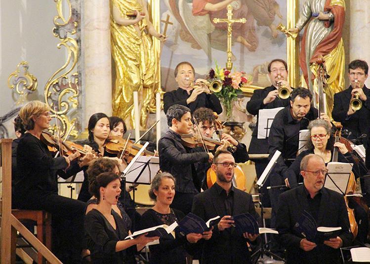 Très grand concert : Messe en si de J. S. Bach  par Gli Angeli à Saessolsheim