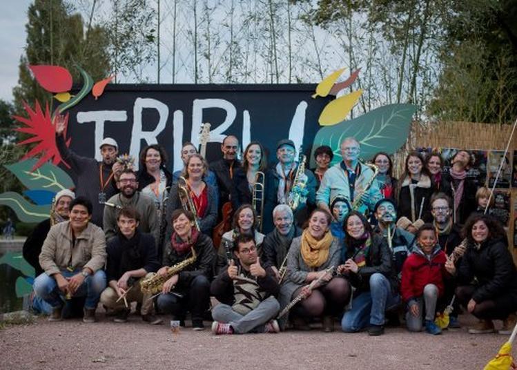 Tribu Festival 2017 à Dijon