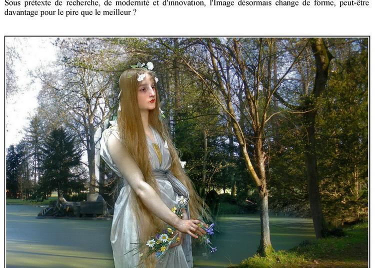 Hommage - Tribute à Chassagne Montrachet