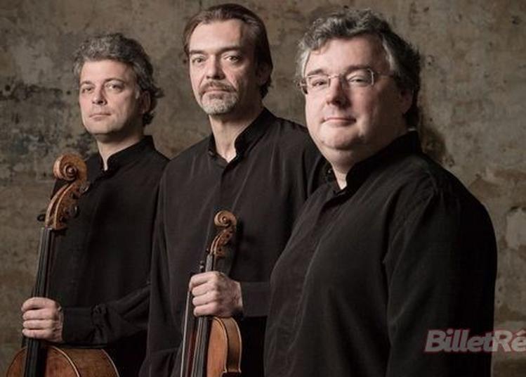 Trio Wanderer à Paris 8ème