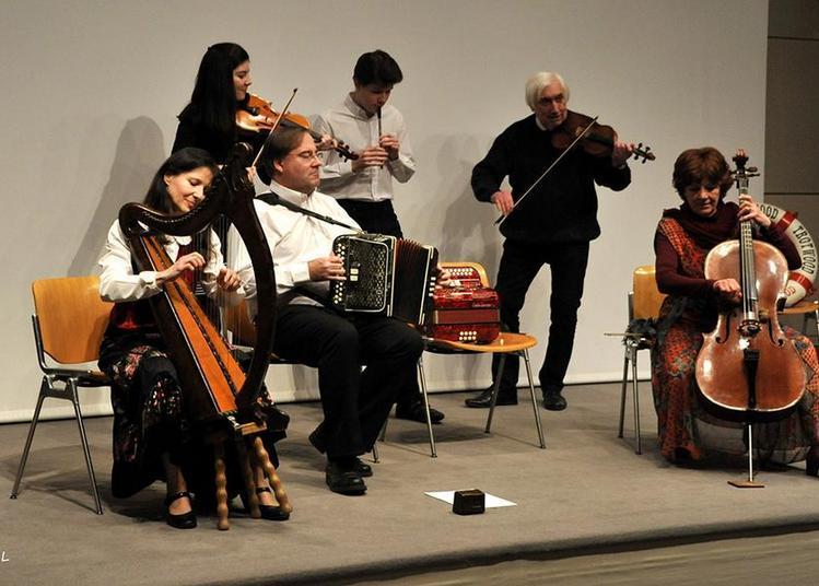 IRLANDE Concert à Saint Etienne