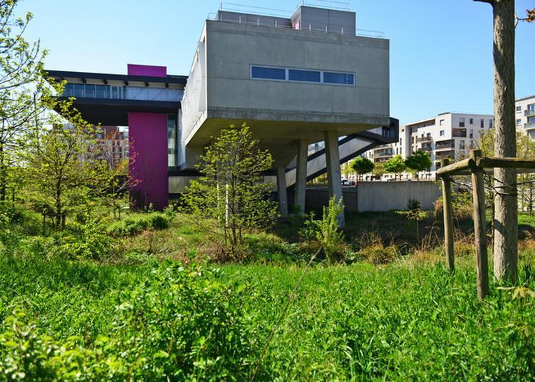 Un Après-midi Au Jardin De La Maison Des Sciences De L'homme Paris Nord à La Plaine saint Denis