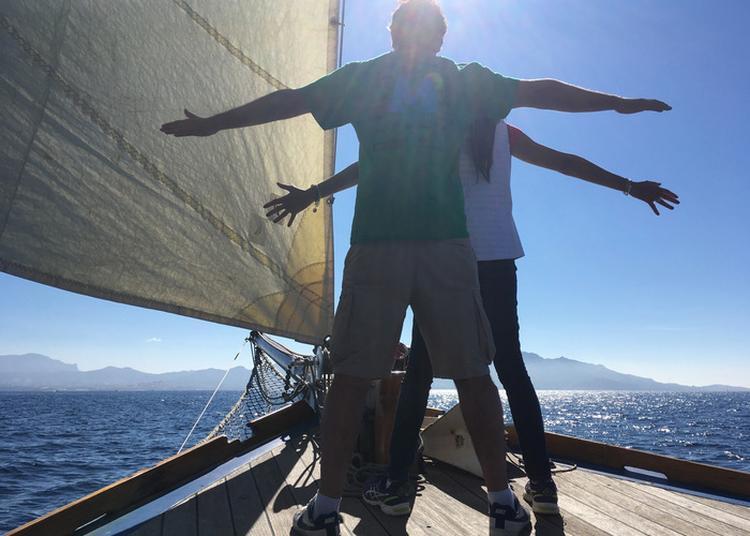 Un Moment De Partage Musique à Bord De La Flâneuse à Marseille