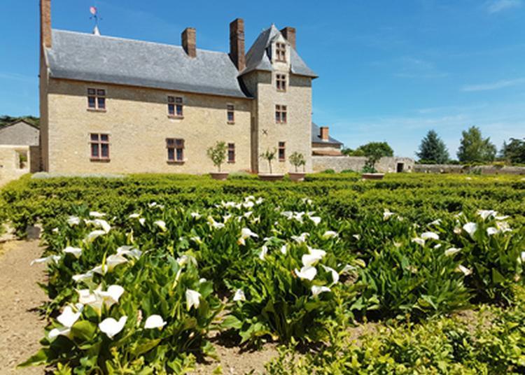 Un Monument Historique Au Milieu Des Vignes Du Layon à Martigne Briand