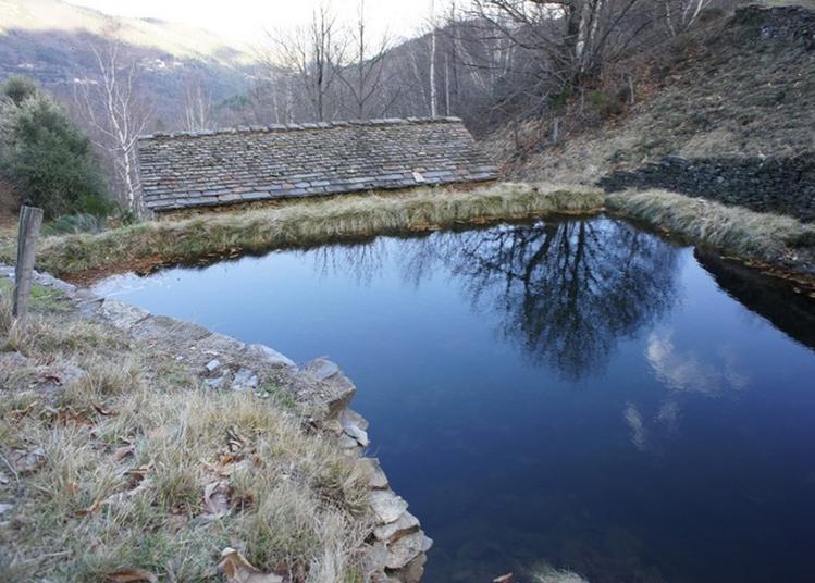 Un Moulin De Montagne Cévenol, Le Bâti Pour Le Captage Et La Circulation De L'eau à Vialas