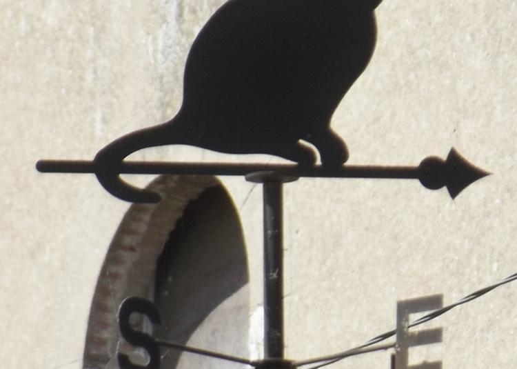 Un Oeil En Haut Un Oeil En Bas à Meung sur Loire
