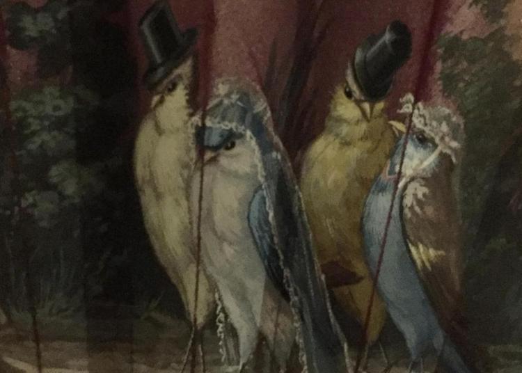 Un surprenant voyage au coeur du 19e siècle... à Auxerre