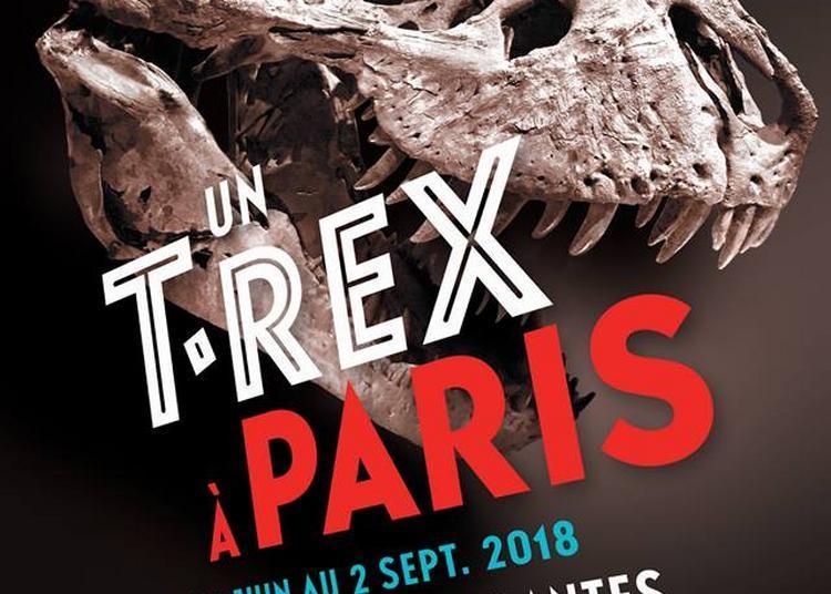 Un T.Rex à Paris à Paris 5ème