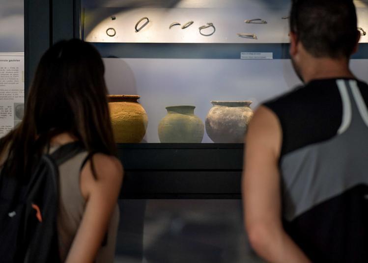 Un Week-end Riche En Archéologie à Sanguinet