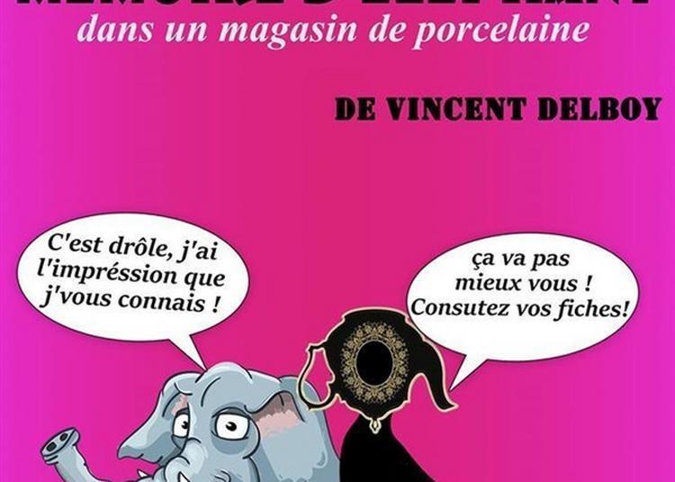 Une Mémoire D'éléphant Dans Un Magasin De Porcelaine à Nice