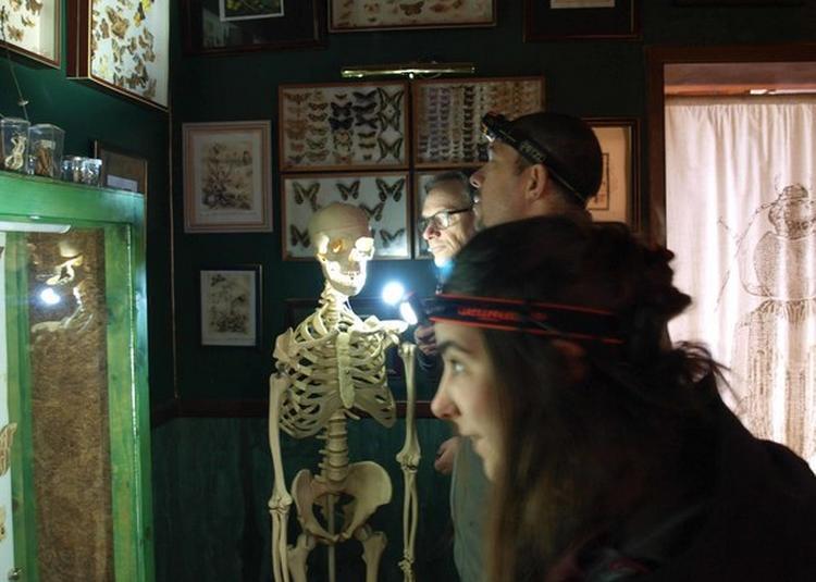 Une Nocturne En Tête-à-tête à La Lampe Torche Avec Les Insectes ! à Nedde