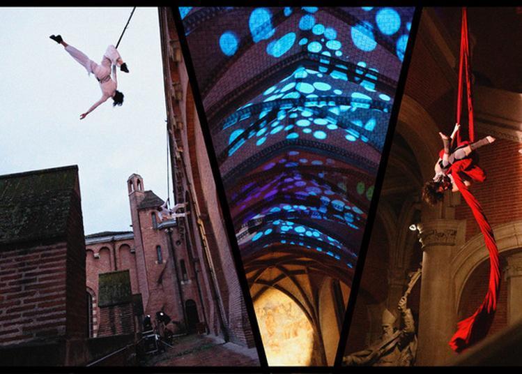 Variations Verticales - Une Histoire De Têtes En L'air à Toulouse